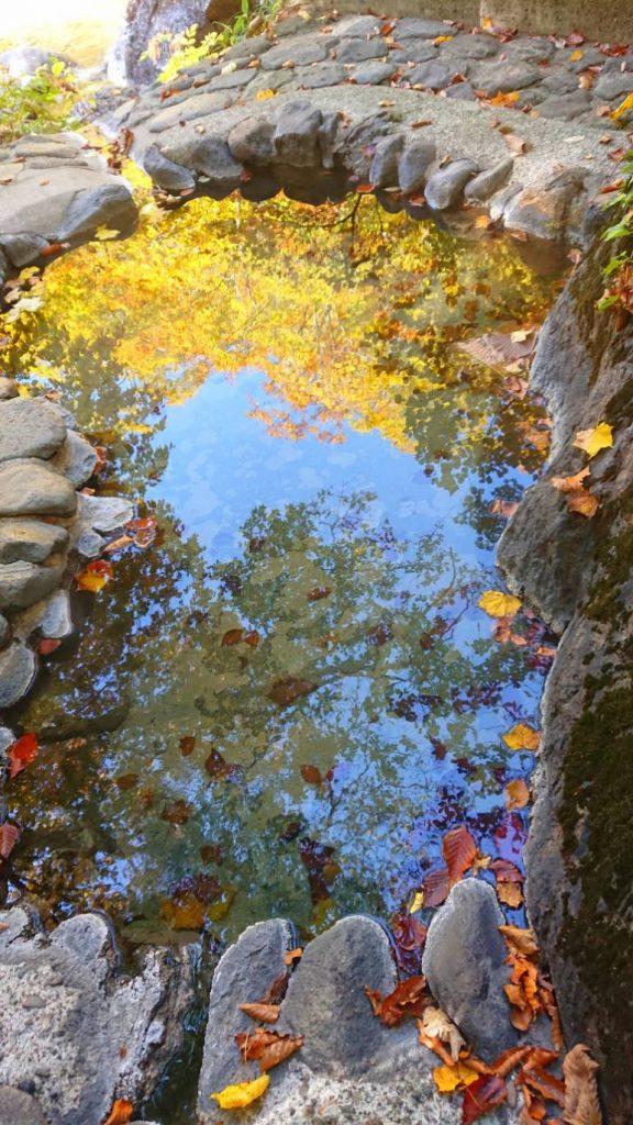 ゆざわジオパーク、紅葉、秘湯を守る会、露天風呂、秋ノ宮温泉峡